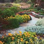garden-path-ideas6.jpg