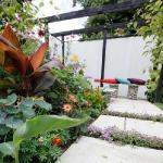 garden-path-ideas20.jpg