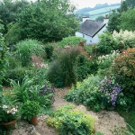 garden-path-ideas35.jpg