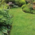 garden-path-ideas36.jpg