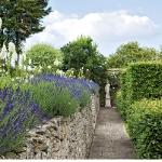 garden-path-ideas54.jpg