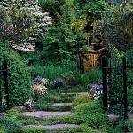 garden-path-ideas56.jpg