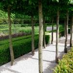 garden-path-ideas63.jpg