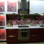 glass-photo-panel-for-kitchen1-4.jpg