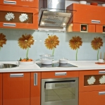 glass-photo-panel-for-kitchen1-5.jpg