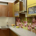 glass-photo-panel-for-kitchen1-6.jpg