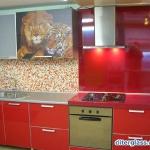 glass-photo-panel-for-kitchen3-13.jpg