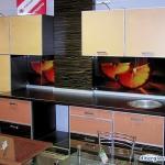 glass-photo-panel-for-kitchen3-18.jpg