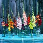 glass-vases-creative-ideas3-9.jpg