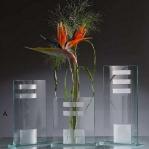 glass-vases-creative-ideas7-2.jpg