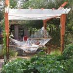 hammock-in-garden1-4.jpg