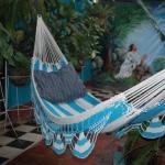 hammock-in-garden2-9.jpg