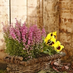 heather-home-decorating-ideas1-1.jpg
