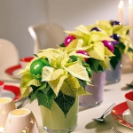 home-flowers-in-new-year-decorating1-2.jpg
