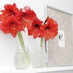 home-flowers-in-new-year-decorating3-4.jpg