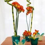 home-plants-creative-ideas1-5.jpg