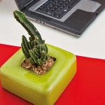 home-plants-creative-ideas2-4.jpg