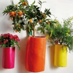 home-plants-creative-ideas4-8.jpg
