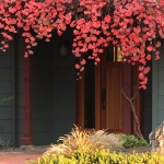 how-to-embrace-wonderful-autumn1-1.jpg