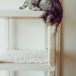 ikea-furniture-hacks-for-cats1-4