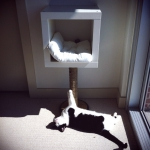 ikea-furniture-hacks-for-cats2-4