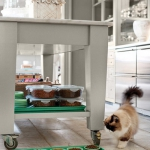 kitchen-organizing-tricks-by-martha-for-pets1.jpg