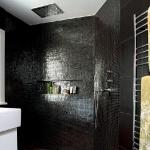 lara-francis-design-bathroom-dramatic3-1.jpg