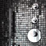 lara-francis-design-bathroom-dramatic3-4.jpg