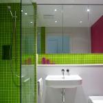 lara-francis-design-bathroom-colorful1-1.jpg