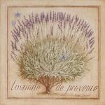 lavender-home-decorating-ideas6-4.jpg