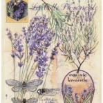 lavender-home-decorating-ideas6-5.jpg