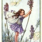 lavender-home-decorating-ideas6-7.jpg