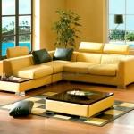 leather-furniture-color1.jpg