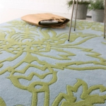 lifestyle-by-amy-butler-rugs9.jpg