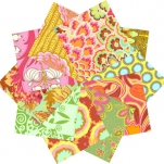 lifestyle-by-amy-butler-fabrics3.jpg