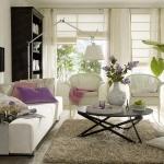 livingroom-plus-diningroom-combo-ideas3-1.jpg