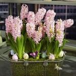 new-easter-ideas-by-marta-flowers1_0.jpg