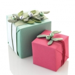 new-year-gift-wrapping-themes4-6.jpg