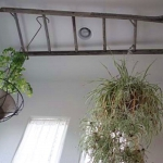 old-recycled-ladder-ideas6-3.jpg