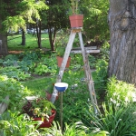 old-recycled-ladder-ideas7-6.jpg