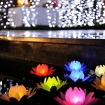 outdoor-decorative-lighting2-8.jpg