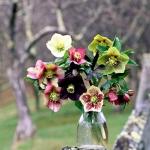 outdoor-garden-bouquet12.jpg