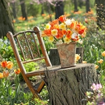 outdoor-garden-bouquet2.jpg
