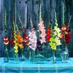 outdoor-garden-bouquet24.jpg