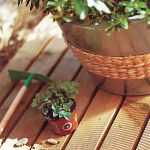 patio-and-terrace-wood-decking-ideas1-2.jpg
