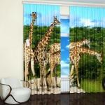 photo-blinds-stick-butik-nature6-2.jpg