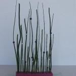 pink-gerbera-diy-easy-floristics3-2.jpg
