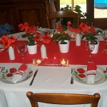 poppy-decorated-table-setting2-9.jpg