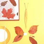 press-leaf-project10-2.jpg