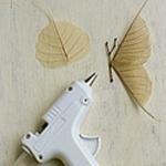 press-leaf-project11-2.jpg